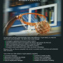 Basketball-Ad.jpg