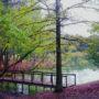 mag-creek-1